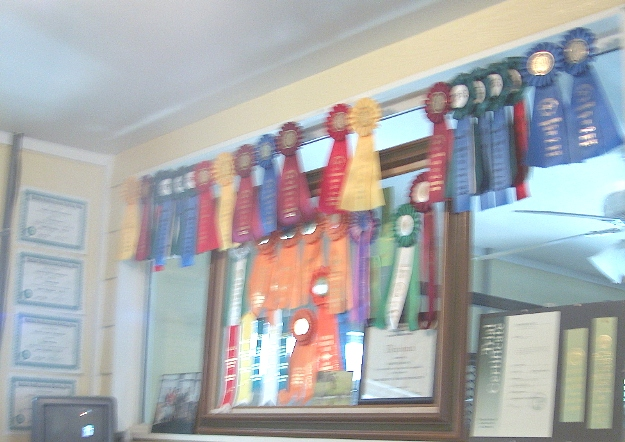 Obedience, Field, and Agility Ribbons
